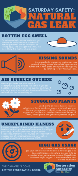 Natural Gas Infographic (1)